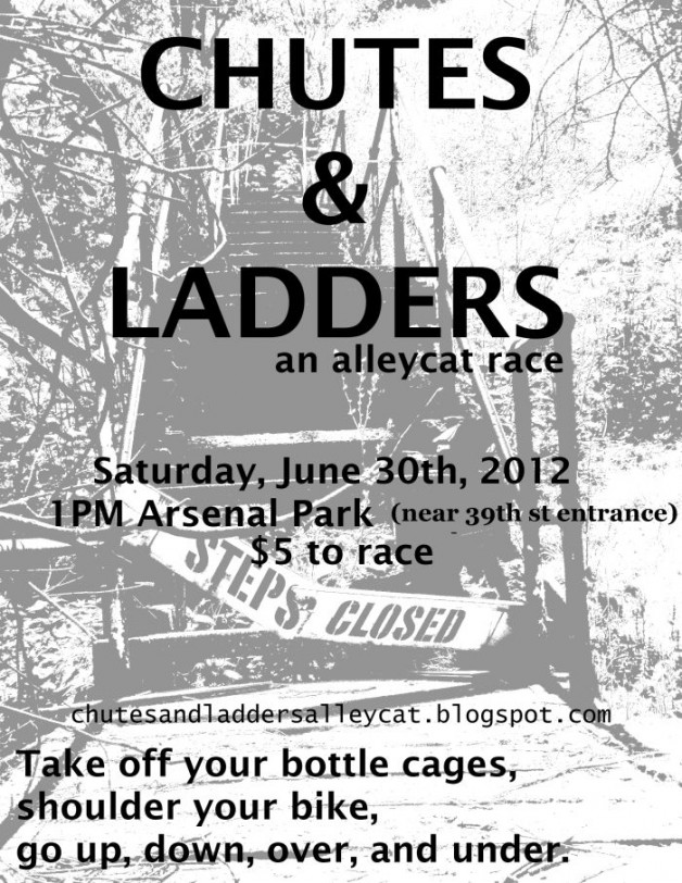 Chutes & Ladders Alleycat Flyer